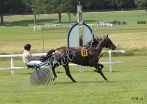 Courses Segre 2012 01