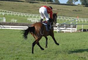 Courses Segre 2012 03